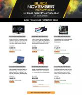 Newegg Black Friday Price Protection Ad 2020