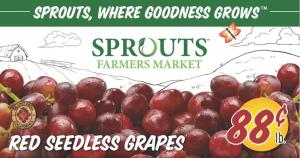 sprouts ad oct 21 2020