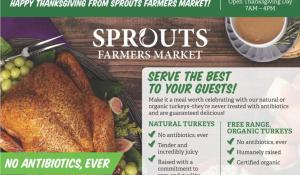 sprouts ad thanksgiving nov 18 2020