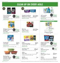 Publix Ad Cleaning Supplies Jul 17 23 2019